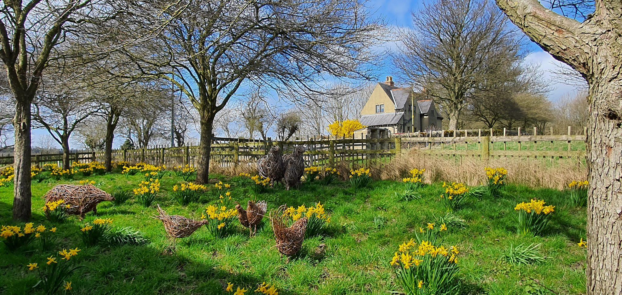 Wiosna w Fountains Abbey