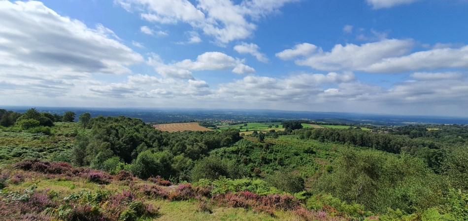 wędrówka na Bickerton Hill - panorama ze szczytu
