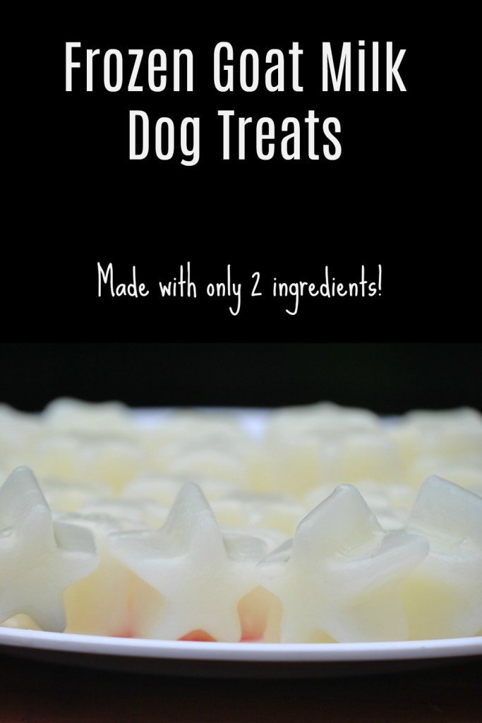 frozen goat milk dog treats made with 2 ingredients
