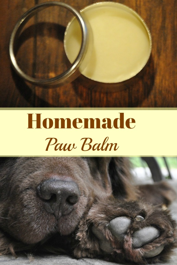 Homemade paw balm for your dog. It's super easy to make right in your own kitchen and it will keep your dog's paws healthy in the brutal winter months ahead!