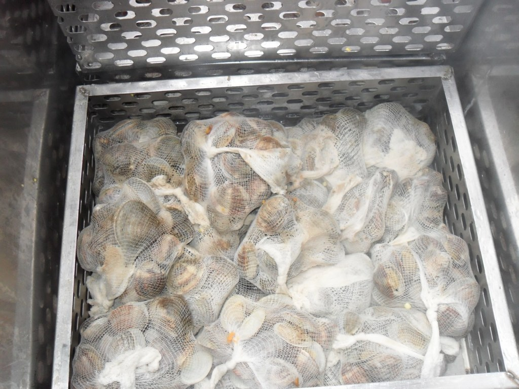 Clam shells can be harmful to dogs if ingested.