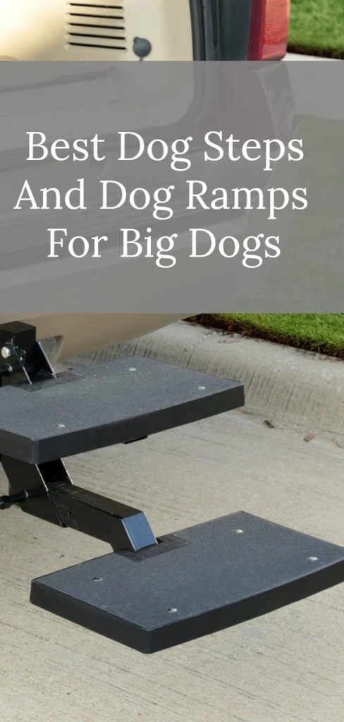 Looking for an easy and safe way to get your big dog in and out of the car? Here's a great list of the best dog steps and dog ramps for big dogs.