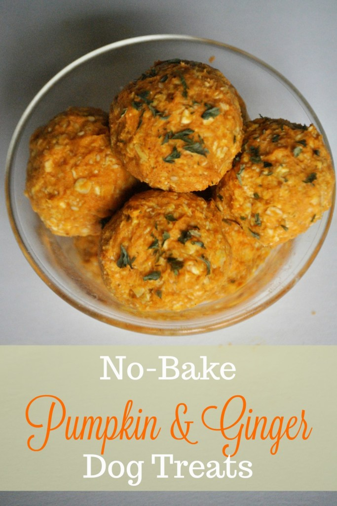 No-bake pumpkin and ginger dog treats are easy to make and low in fat making them a great treat for healthy dogs