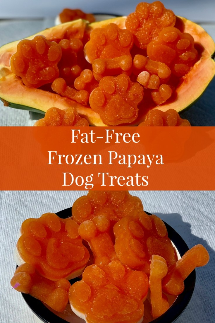 DIY Frozen Papaya Dog Treats