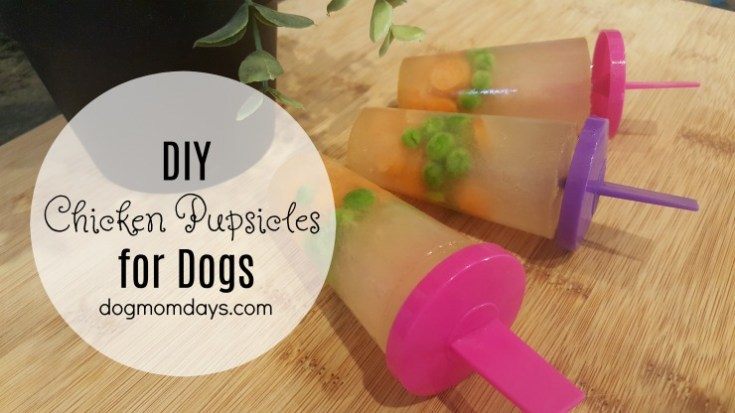 DIY 3-Ingredient Chicken Pupsicles for Dogs