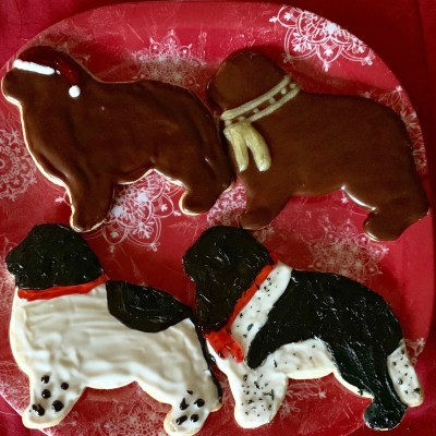 newfoundland dog sugar cut out cookies decorated with icing