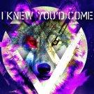 I Knew You'd Come.com Website Launch Logo (Logo Credit: www.IKnewYoudCome.com)