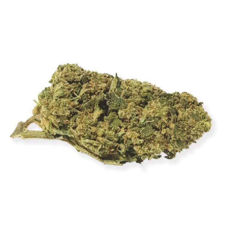 Fleur CBD puissante Gorilla Glue, fruitée et sucrée