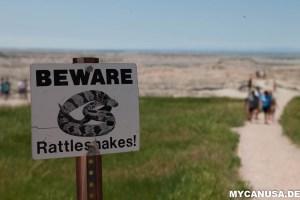 Badlands Nationalpark Klapperschlange