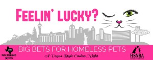 Big Bets for Homeless Pets @ McKenna Events Center | New Braunfels | Texas | United States