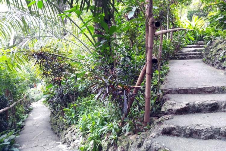 duranDurano Eco Farm and Spring Resort stepso-eco-farm-steps