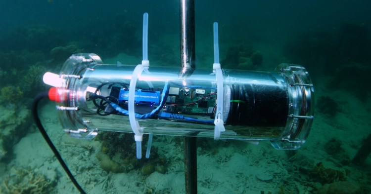 An intelligent underwater video camera to detect, photograph and classify fish that helps Accenture, Intel and Sulubaaï Environmental Foundation make data-driven decisions for restoring the coral reef surrounding the Pangatalan Island in the Philippines.