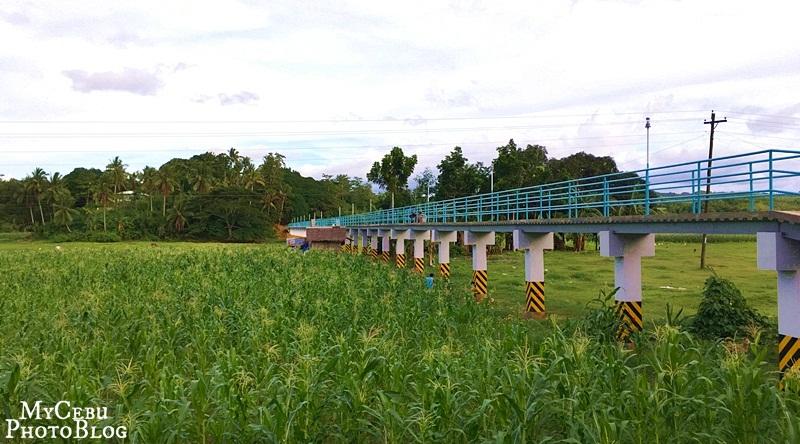 A Footbridge in Tuburan