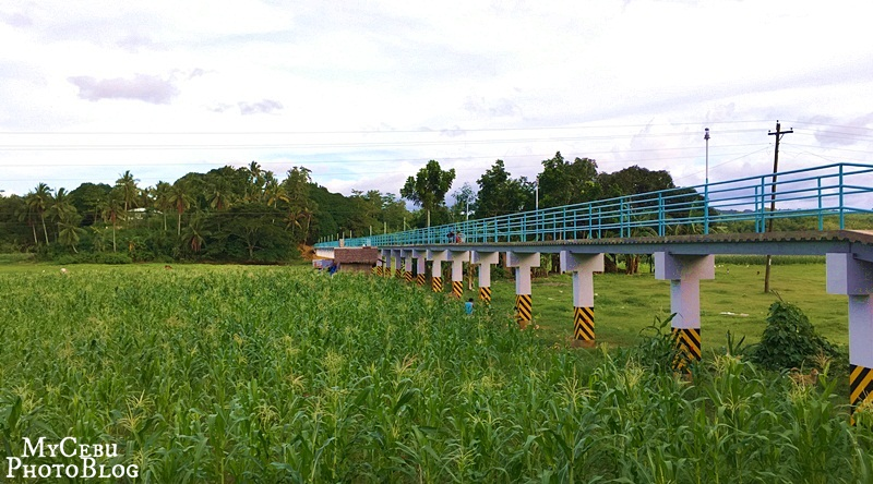 A Footbridge in Tuburan