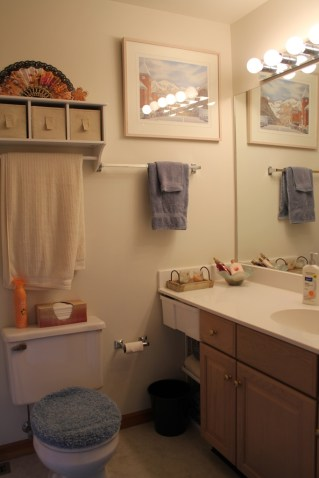 Downstairs bath (guest room)