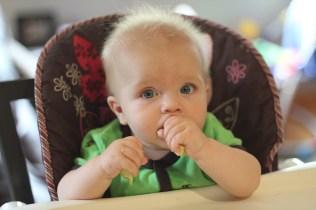 Harvey - 6 months