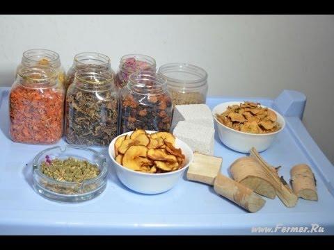 Чем можно кормить шиншиллу кроме корма