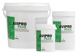 Пробиотик Avipro Plus шиншилла