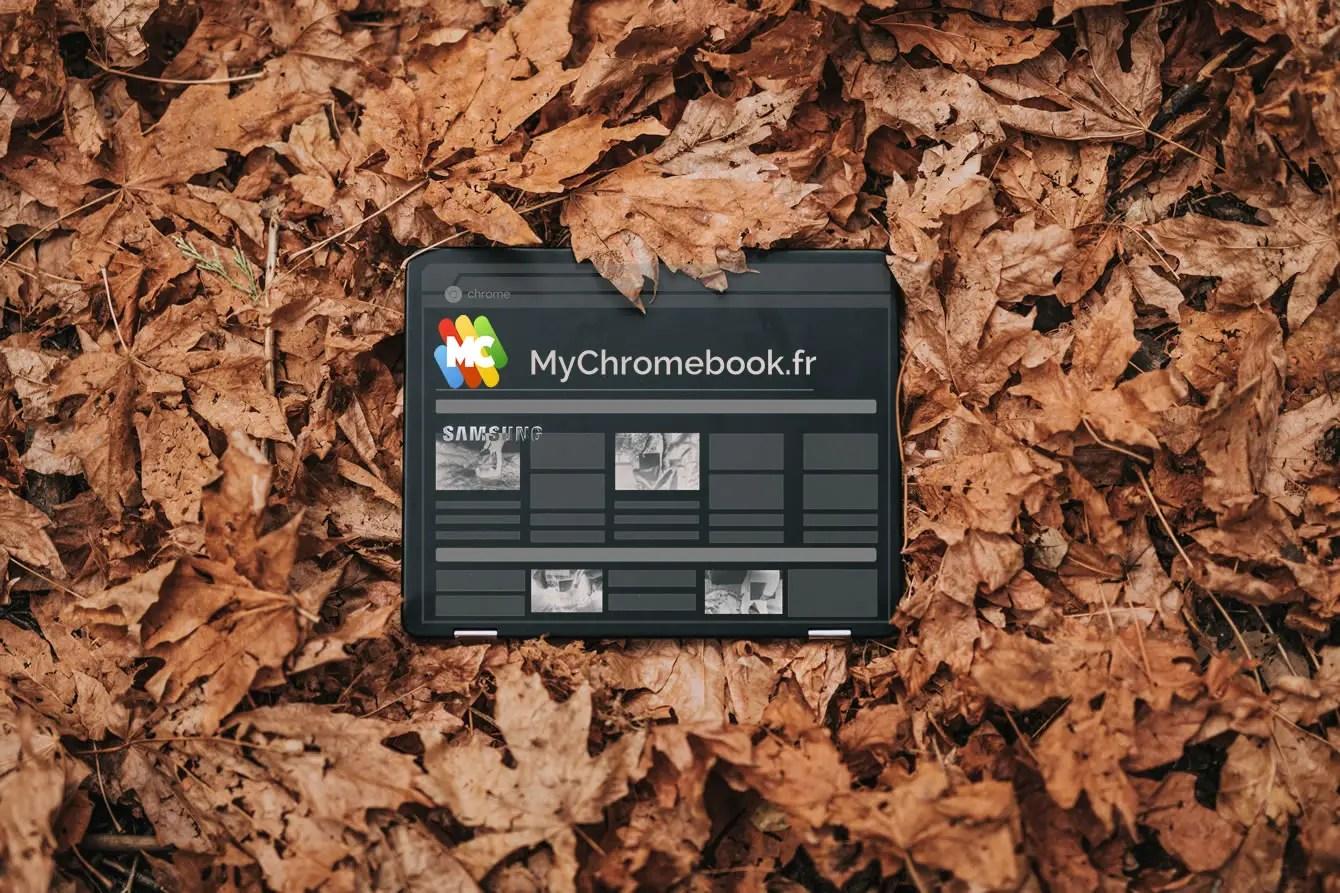 Chromebook sur un tapis de feuille morte