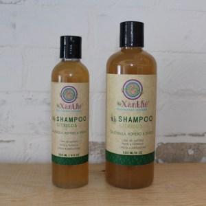 shampoo citricos