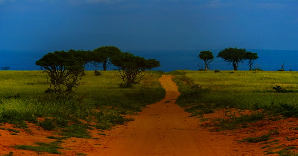 Emmanus Road