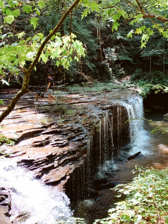 Princess Falls- South Daniel Boone National Forest, big South fork Kentucky
