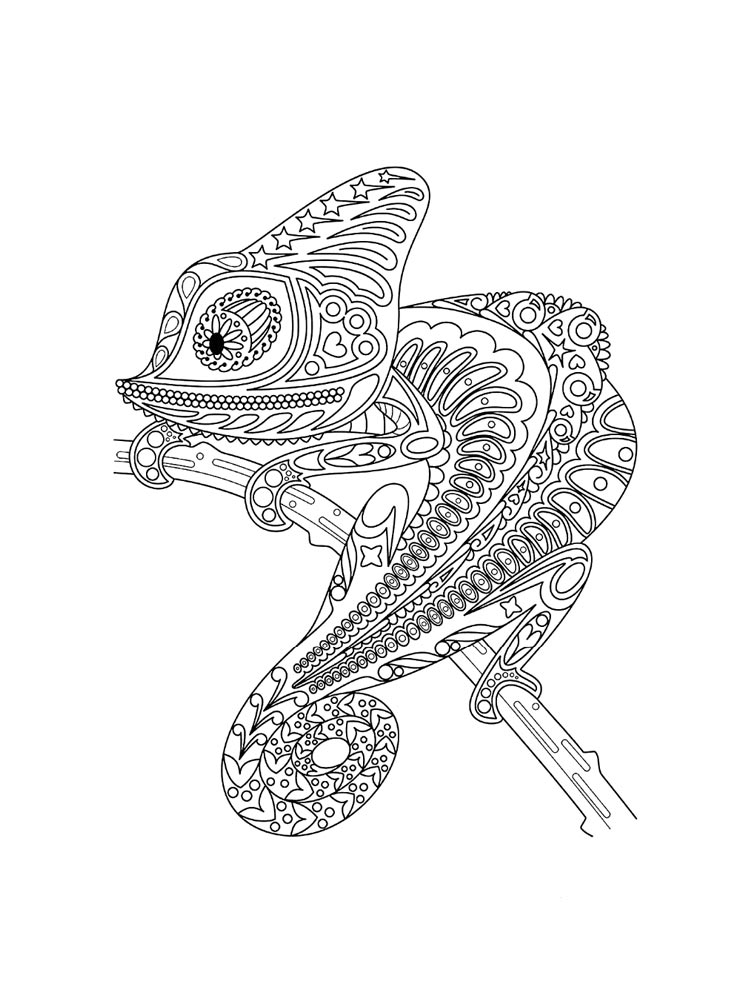 Free Chameleon Coloring Pages Download And Print Chameleon Coloring Pages