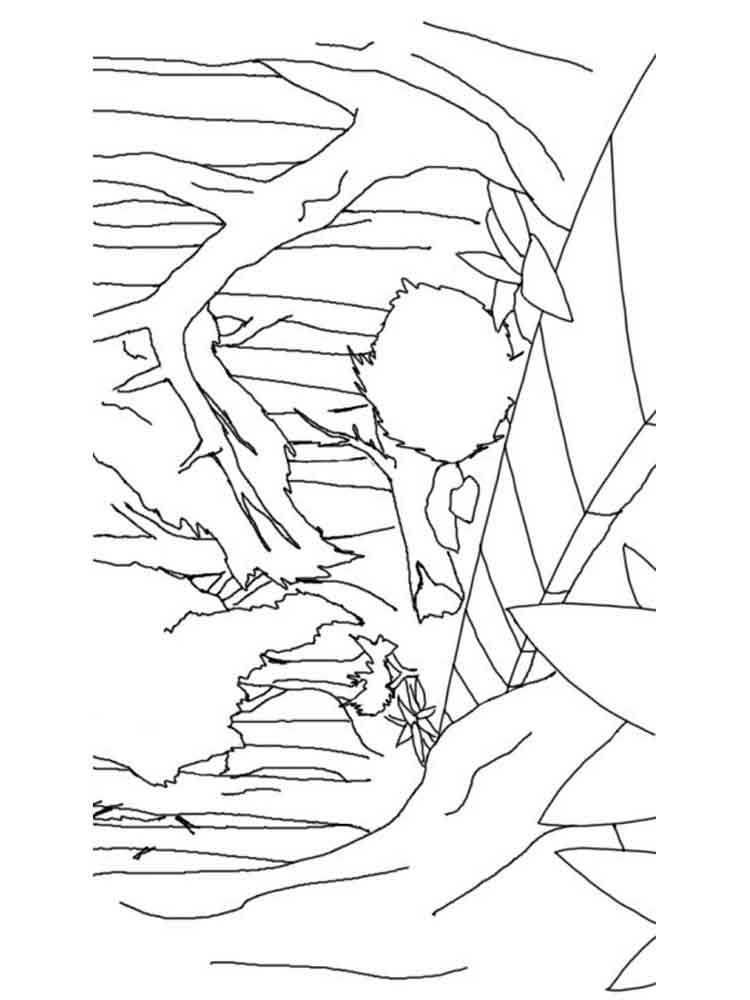 forest coloring pages. download and print forest coloring