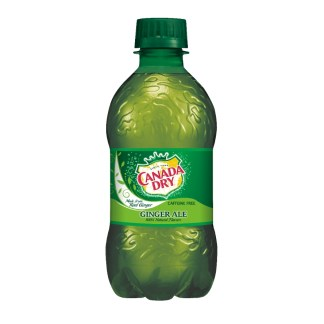 Canada Dry Ginger Ale Soda 250 ML