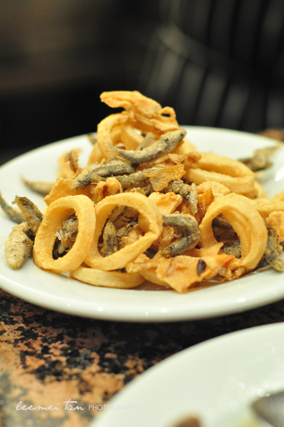 fried-calamari-white-baits