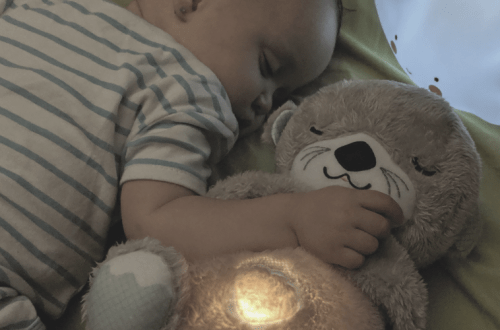 Llúdriga hora de dormir de Fisher-Price