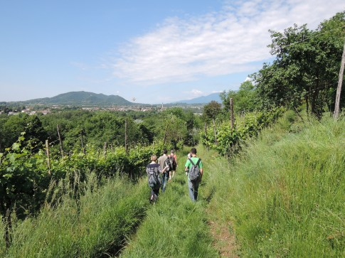 Bloggers walking down the Marcon Hill