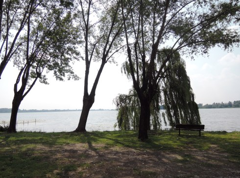 Bench in front of the Lake in Mantova