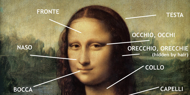 Upper body parts in Italian