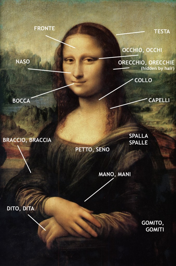 Upper body parts in Italian, pic by commons.wikimedia.org