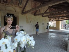 Bloggers at work, Pieve di San Pietro, Feletto