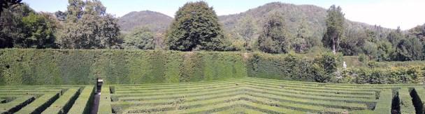 Maze, Valsanzibio Gardens