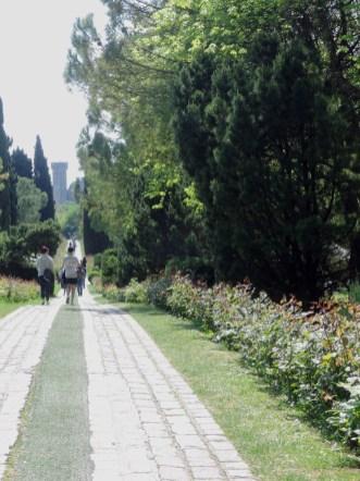 Roses Avenue