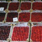 Marostica cherry festival