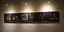 Nishikawa's photos