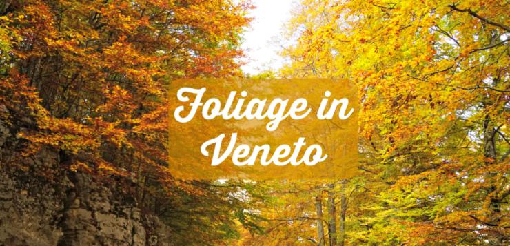Foliage in Veneto