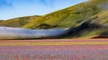 Castelluccio di Norcia. Photo by Filippo Chinello