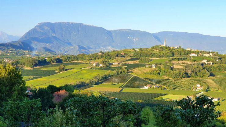 The view from Ca' del Poggio hotel, Prosecco road itinerary