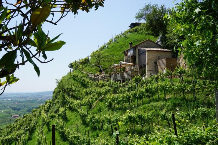 Prosecco road itinerary: Osteria senz'Oste