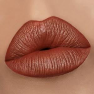 Gerard Cosmetics Mudslide Matte Liquid Lipstick Medium Skin Swatch