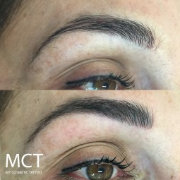 Eyebrow Tattoo Hair Strokes