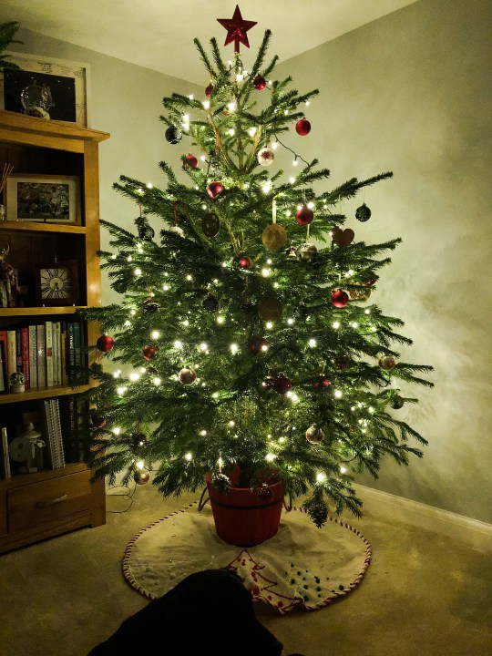 10 Christmas Traditions you can start this year