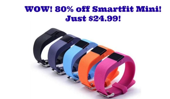 smartfit-mini-deal