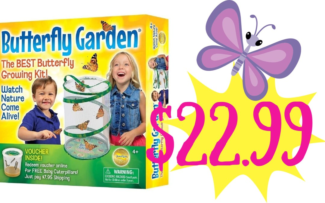 Insect Lore Butterfly Growing Kit - With Voucher to Redeem Caterpillars