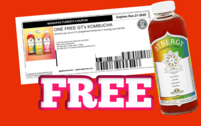 FREE coupon for Bottle of GT's Synergy Raw Kombucha